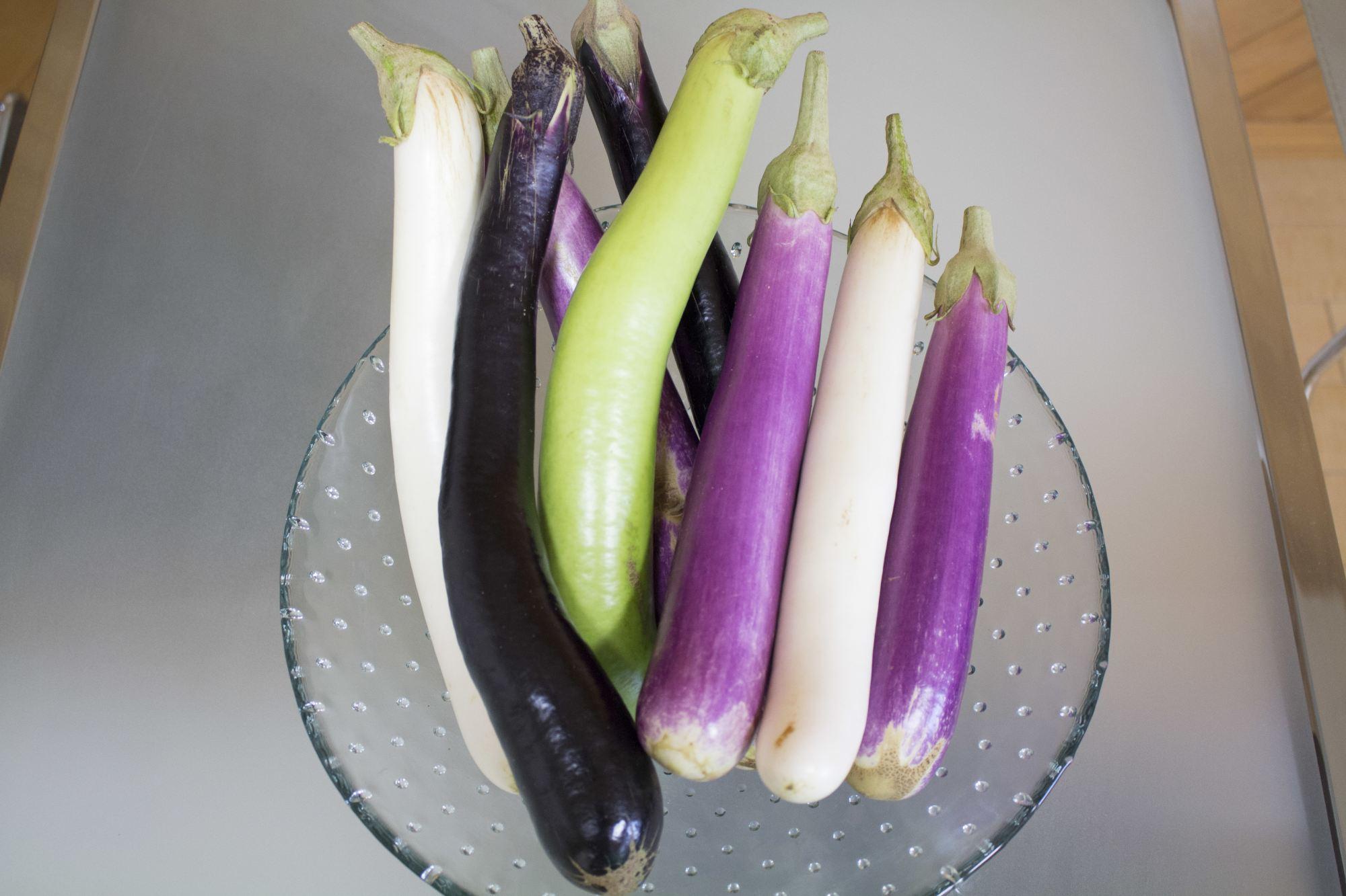 お客様からの贈り物。大きな夏野菜のナス
